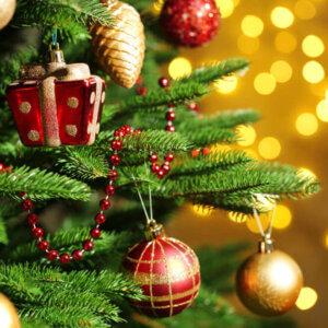 Musiker für Weihnachtsfeier buchen